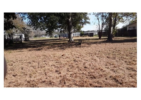Lot for sale with septic tank